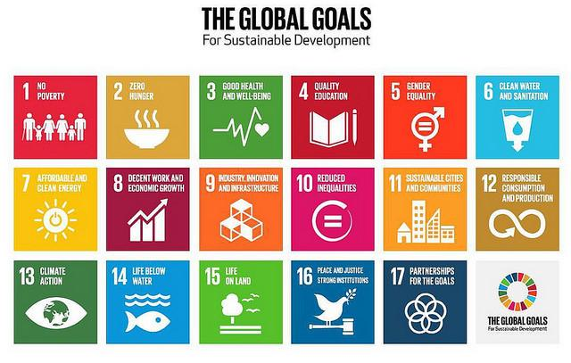 A graphic of the 17 sustainable development goals