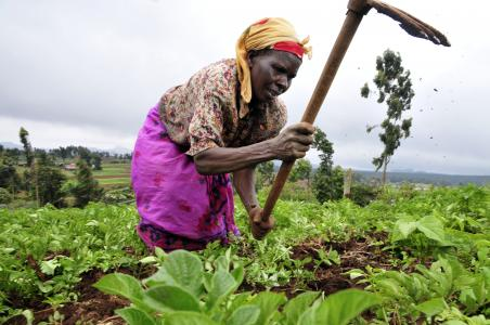 Photo of a farmer
