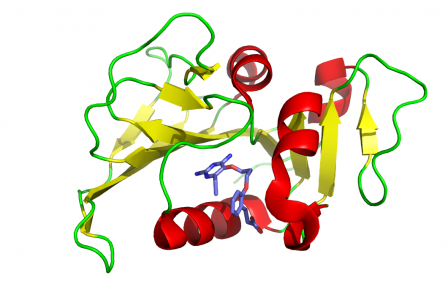 Photo of mycobacterium tuberculosis protein structure
