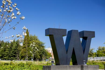 Photo of UW's Rainier Vista