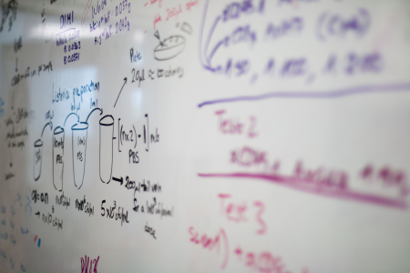 A photo of a white board with lab instructions